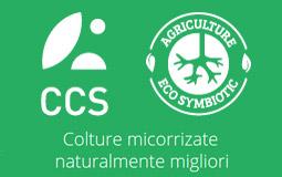ccs_aosta